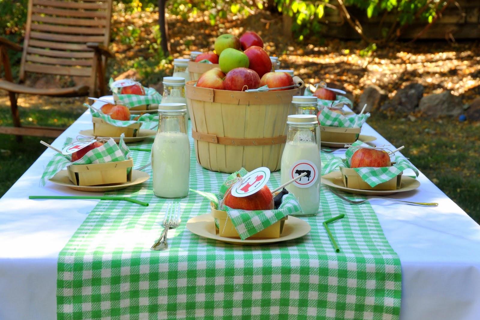 Оформление пикника на день рождения
