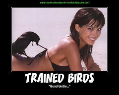 Trained Birds Petra Nemacova Supermodel Motivational Posters Online Demotivational Wallpapers Funny Hot Super Models Girls Babes Bikinis