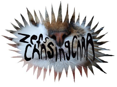 ZEFS CHASING CARA