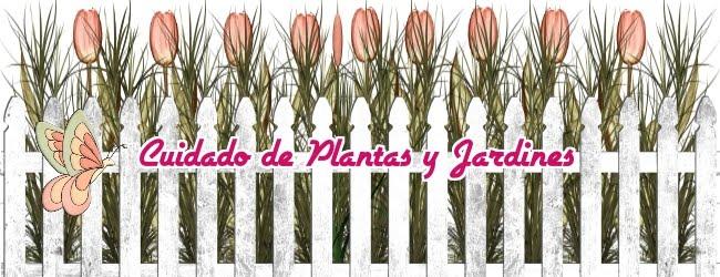 CUIDADO DE PLANTAS Y JARDINES