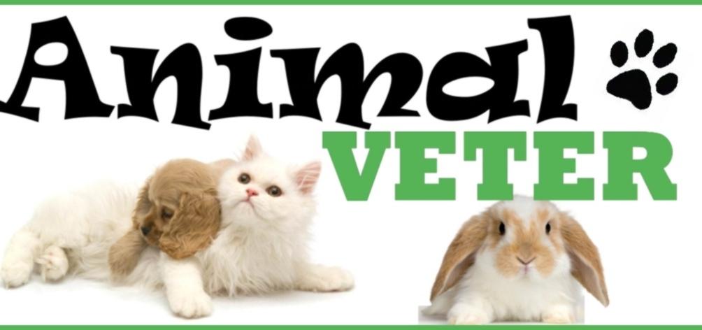 ANIMAL VETER : ANIMAIS E MEDICINA VETERINÁRIA