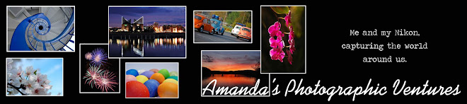Manda's Photographic Ventures