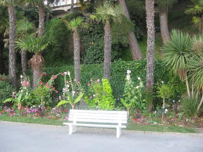 Le jardin Le%2Bbanc%2Bblanc