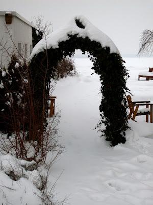 Garten anders: januar 2010