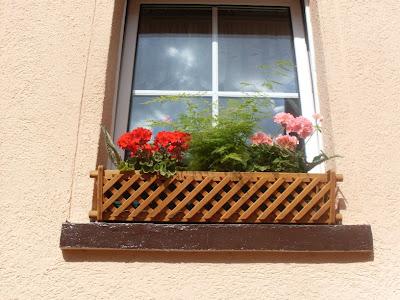 Garten-anders: Fenster in Quedlinburg - der Weltkulturerbe ...
