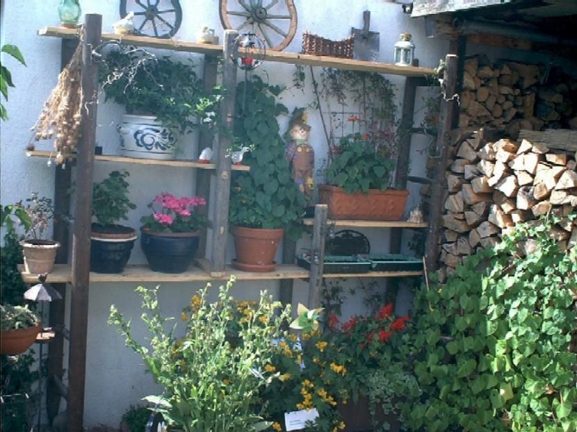 Selbst Gebaut: Ein Blumenregal Aus Einer Leiter Im Garten