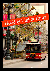 Holiday Lights Tours
