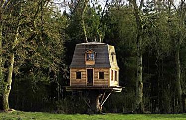 Una Mosca en la Luna: Dormir entre los árboles :  garden outdoor tree house fantasy