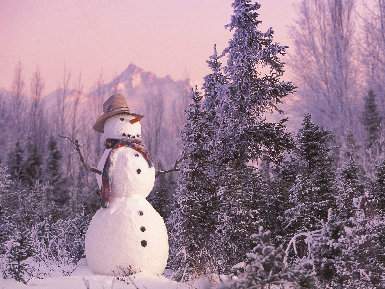 cute country snowman wallpaper - photo #1
