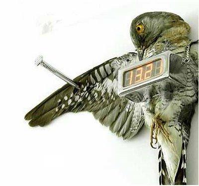 Real Cuckoo Clock