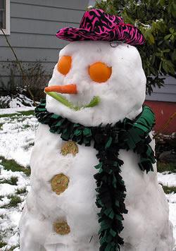 GLAMOUR SHOT snowman