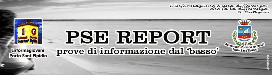 PSE Report