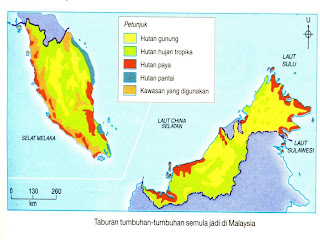 Geografi Hutan Hujan Tropika