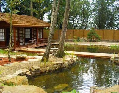 Sport Life Breathtaking Natural Swimming Pools
