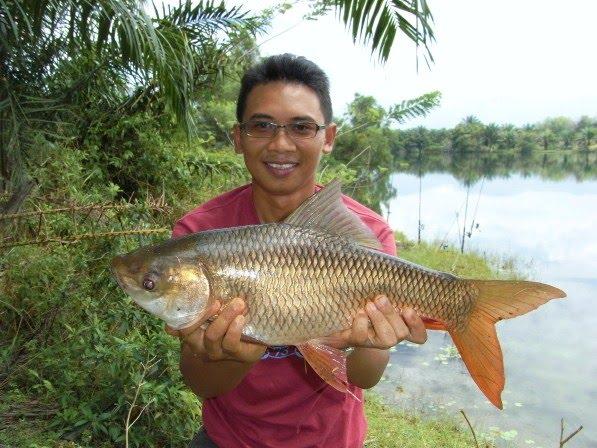 Pancingan Sungai & Lombong