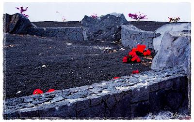 Giardino con lava