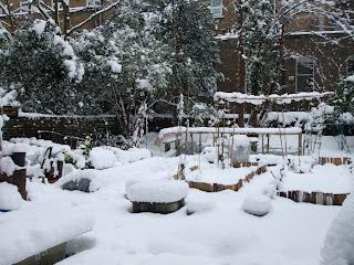 Il giardino com'era stamattina