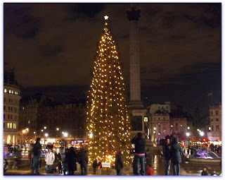 Christmas Tree in Trafalgar Square, London