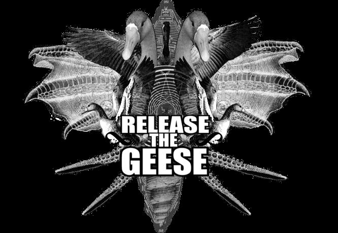 http://4.bp.blogspot.com/_550F4rxHK5U/ShrB1SCmSlI/AAAAAAAAABs/Zkm-gj702kQ/S1600-R/release+the+geese600.png