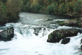 Little White Salmon River Underwood Washington
