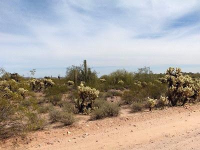 Desert Vulture Mine Road Wickenburg Arizona