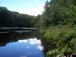 photo of Locke Pond, Winchester, MA