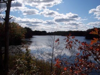photo of Wright's Pond, Medford, MA