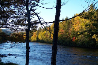 photo of Thirteen Mile Woods, NH