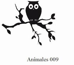 Animales 009 - Buho sobre rama