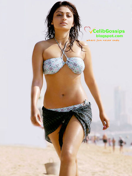 Sonam Bajwa Hot In Best Of Luck Hot neeru the katrina of