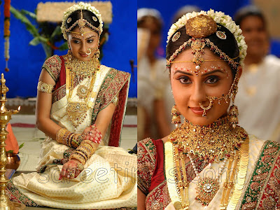 Varudu movie fame South Indian actress Bhanu Mehra in beautiful bridal saree