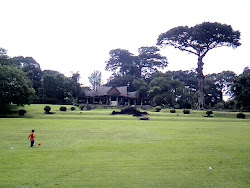 Kebon Raya Bogor