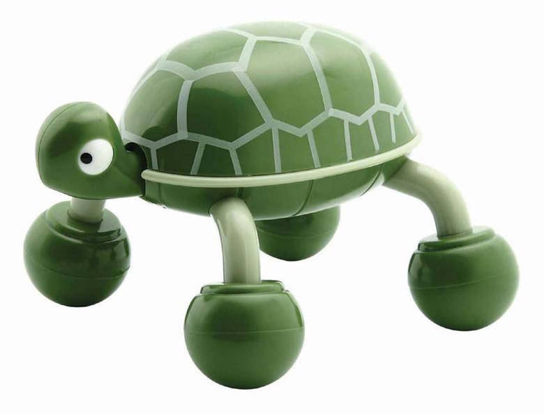¿Cómo alimentar a mi tortuga?