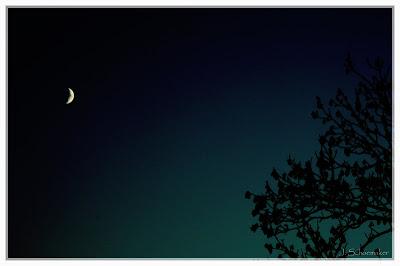 Lua e poema sobre a lua
