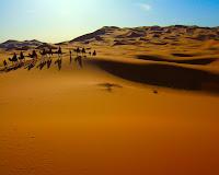 morocco desert/صحراء المغرب