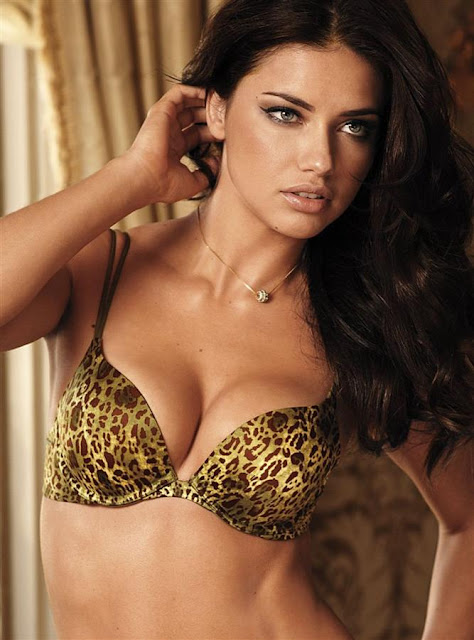 Victoria Secret Wallpaper. victoria secret adriana lima