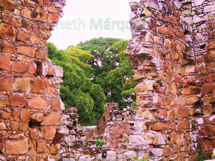 Naturaleza tras las ruinas