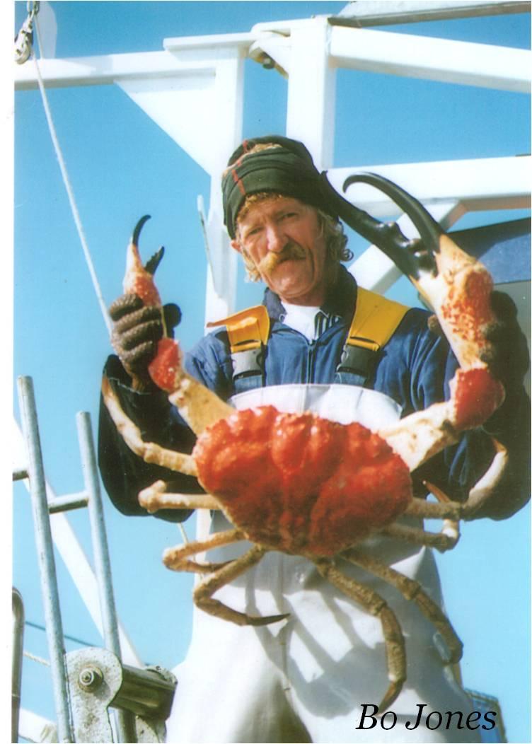 Giant King Crabs Giant Australian Crab
