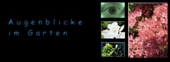 Augenblicke im Garten - Garden Moments