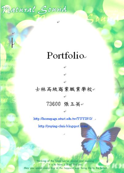 professional portfolio sample