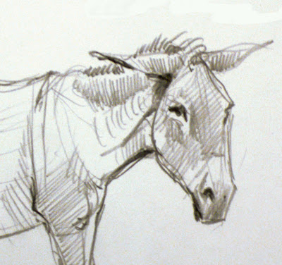 Donkey+head+drawing