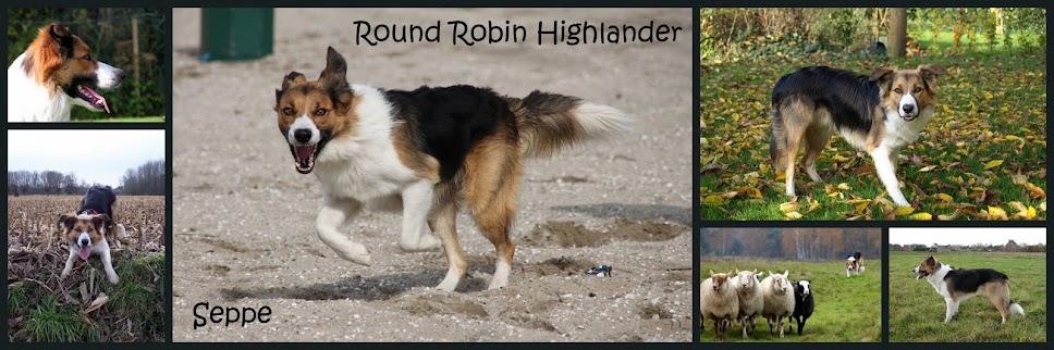 Round Robin Highlander