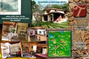 www.fazendatororomba.com.br