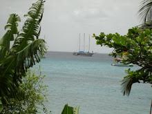 Grenada 2007