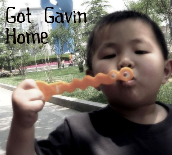 Got Gavin Home