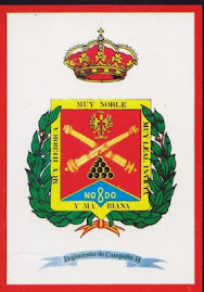 ESCUDO   DEL RACA 14
