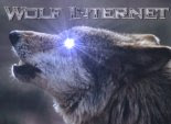 wolfinternet