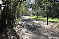 Stadium Drive Trail