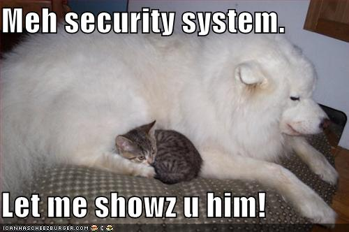 Meh security system showz him