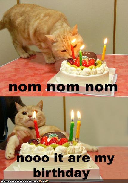 nom birthday